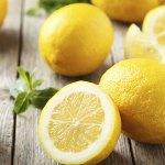 広島レモンを使ったおすすめお菓子7選!お土産にもぴったり!