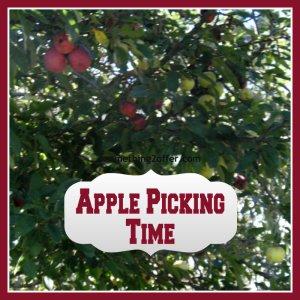apple picking time