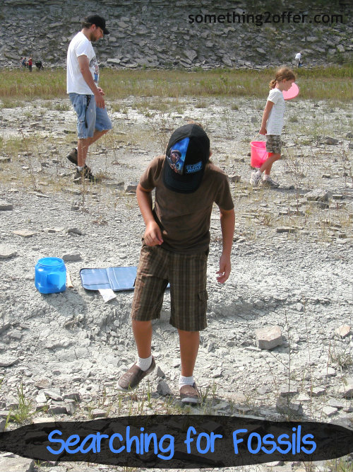 searching for fossils