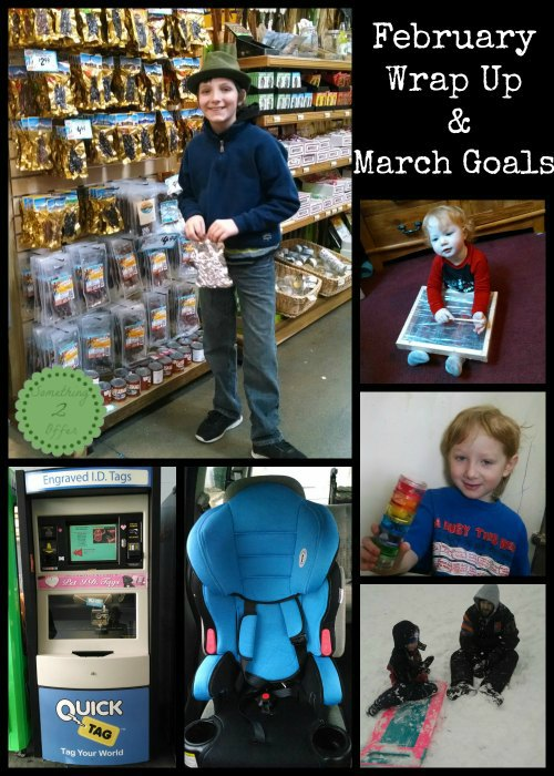 February Wrap Up and March Goals