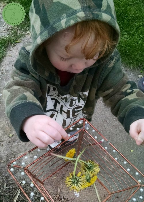 toddler with dandelions in wire basket
