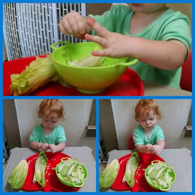 Toddler Lettuce Prep