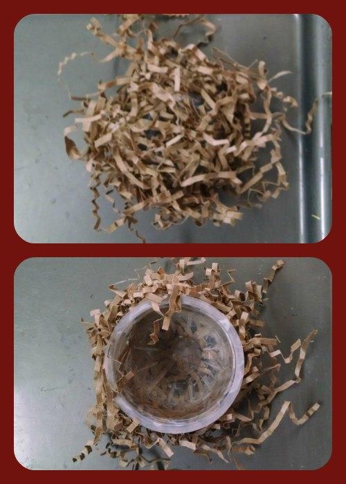 nest crinkle paper