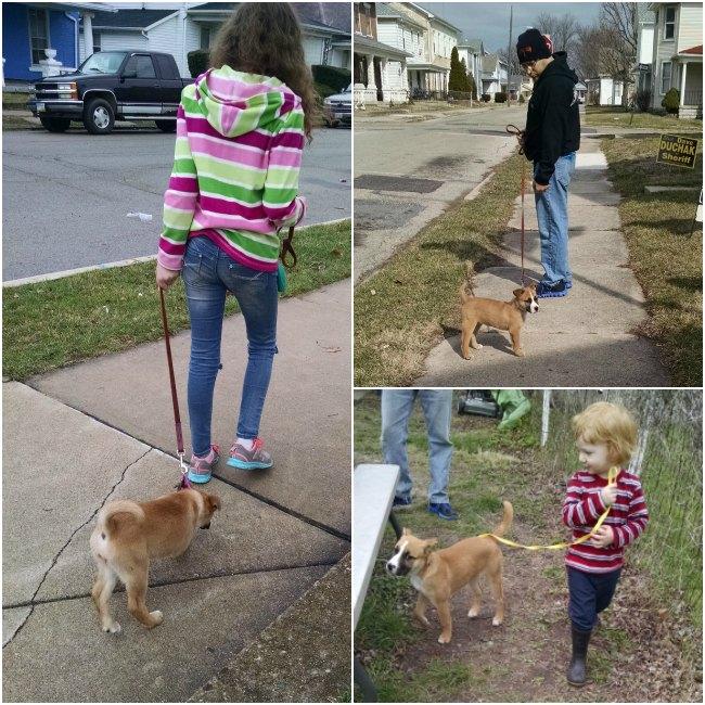 Walking Bayley