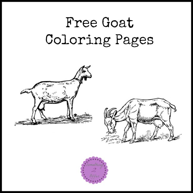 goat coloring pages
