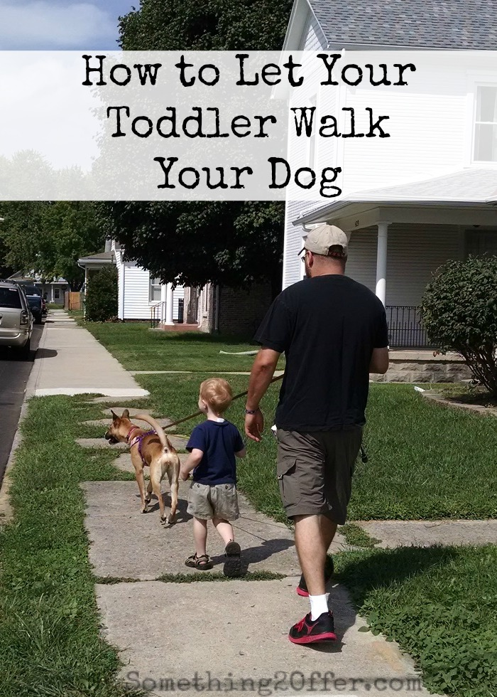 How to Let Your Toddler Walk Your Dog