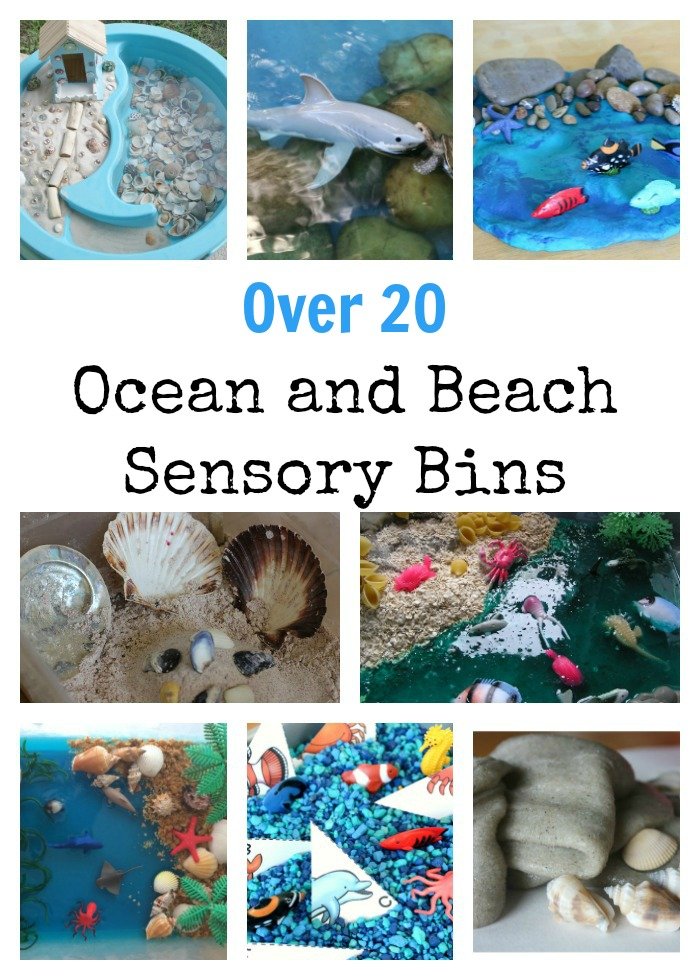 Beach and Ocean Sensory Bins