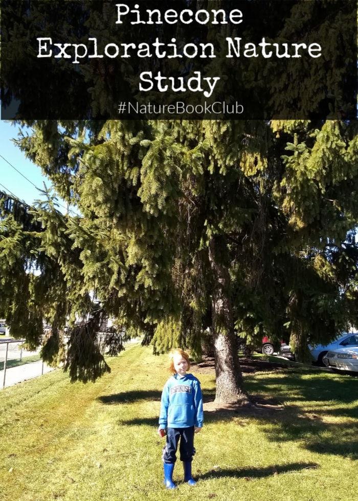 Pincecone Exploration Nature Study #NatureBookClub