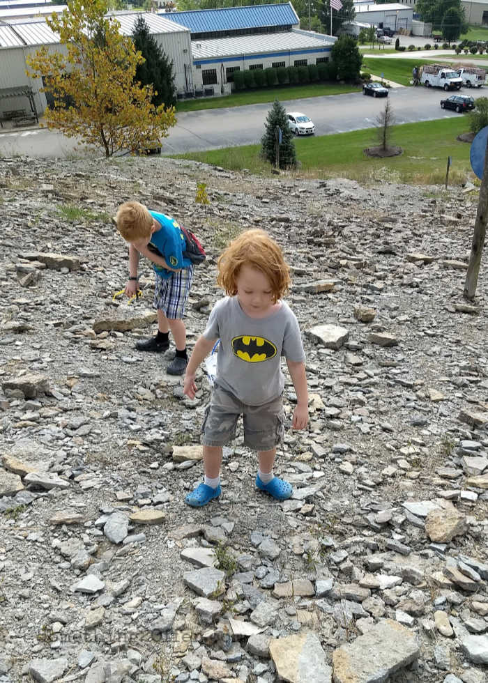 fossil park little boys