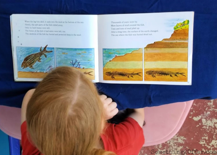 little boy reading a book about fossils