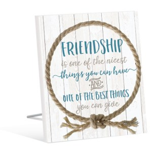 French Country Vintage Inspired Wall Art Wooden ROPE FRIENDSHIP BEST THING Sign NEW