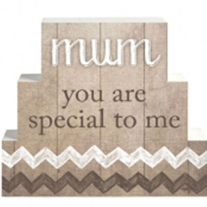 French Country Vintage Inspired Wooden Set of Blocks MUM YOU ARE SPECIAL Sign NEW