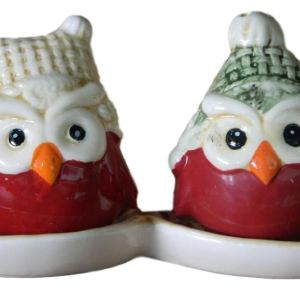 French Country Chic Collectable Novelty Salt and Pepper Set OWLS XMAS New