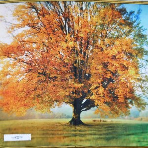 Patchwork Quilting Sewing Fabric AUTUMN FALL TREE Panel 90x110cm New Material
