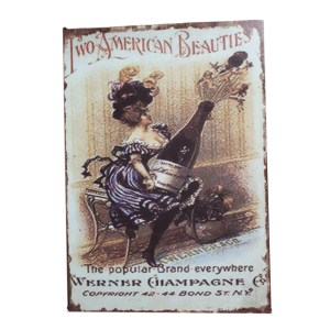 French Country Inspired Vintage Look Wall Tin Signs TWO AMERICAN BEAUTIES New