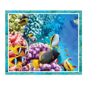 Patchwork Quilting Sewing Fabric GREAT BARRIER REEF FISH Panel 90x110cm New