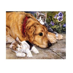 5D Diamond Painting Full Image Square Drills CATS AND DOG 30x40cm New