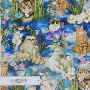 Quilting Patchwork Sewing Fabric PAWSITIVE CATS 50x55cm FQ Material New
