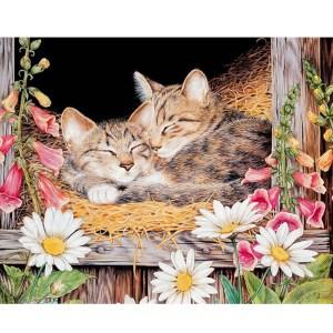 5D Diamond Painting Full Image Square Drills DAISY CATS 30x40cm New