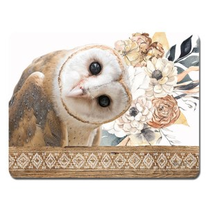 Kitchen Cork Backed Placemats AND Coasters BARN OWL Set 6 New