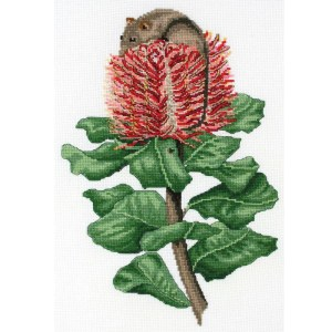 DMC Cross Stitch Kit SCARLET BANKSIA and HONEY POSSUM New 577101