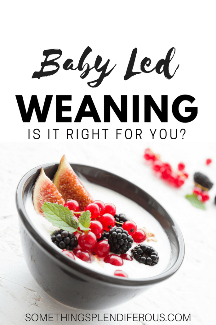 Baby Led Weaning, Is it Right for You?