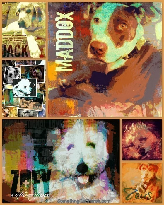 Pet Fusion Collage by Brandi Fitzgerald