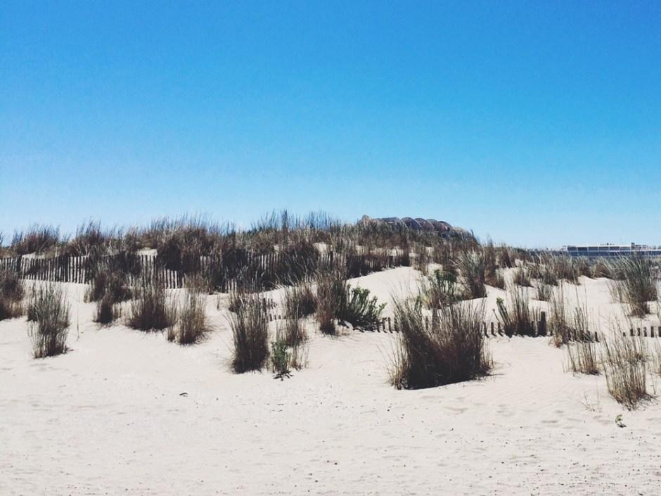plage-dunes-espiguette