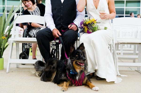ST_Cory_Ryan_Photography_succulent_wedding_17