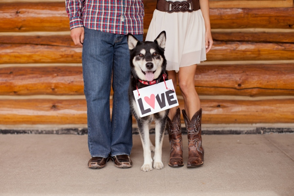 ST_KB_Digital_Designs_dog_engagement_0001.jpg