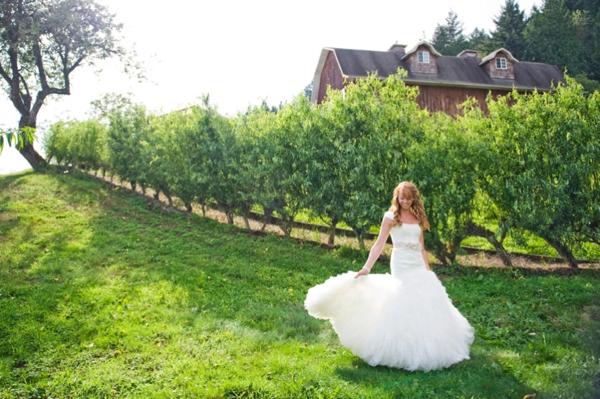 ST-Kristy-Klaassen_Photography-rustic-barn-wedding_0008.jpg