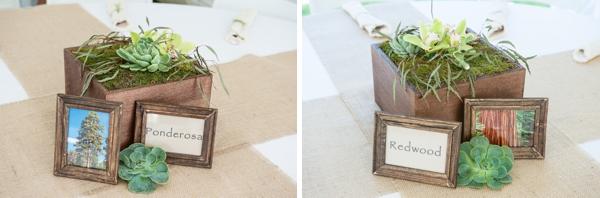 SomethingTurquoise-DIY-wedding-Rachel-Robertson-Photography_0047.jpg
