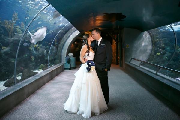 SomethingTurquoise_DIY_aquarium_wedding_Carrie_Wildes_Photography_0010.jpg