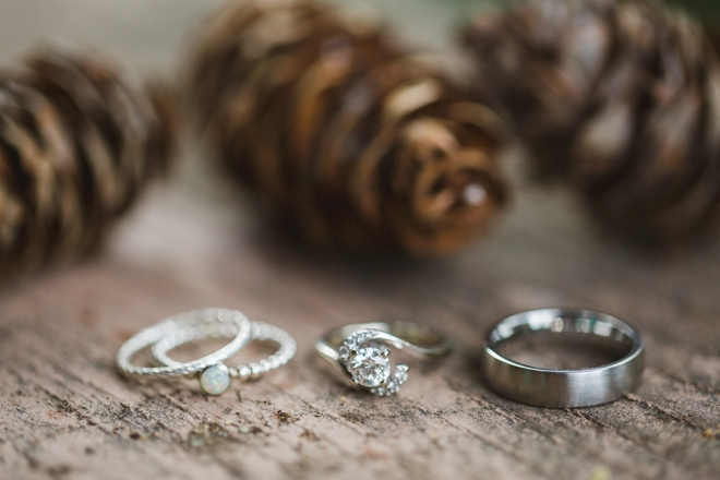 Wedding rings and pinecones.