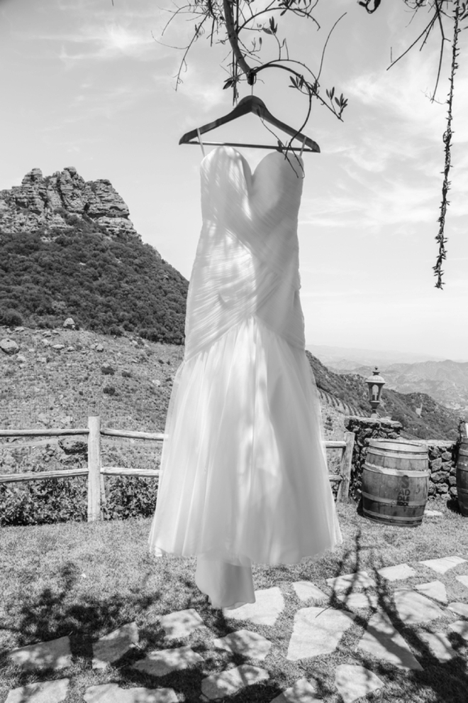 Wedding dress hanging in the trees