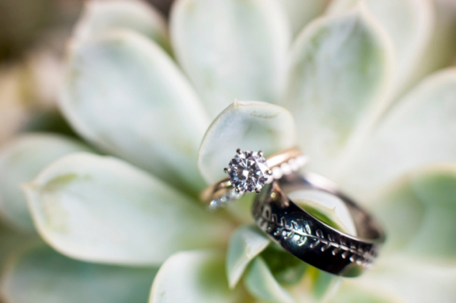 Wedding rings and succulent