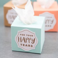 DIY | Mini Wedding Tissue Boxes With Cricut