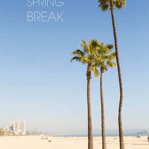 We are on Spring Break! Image by Something Turquoise