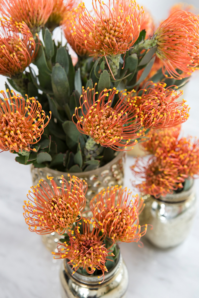 We're crushing over pin cushion protea for weddings!