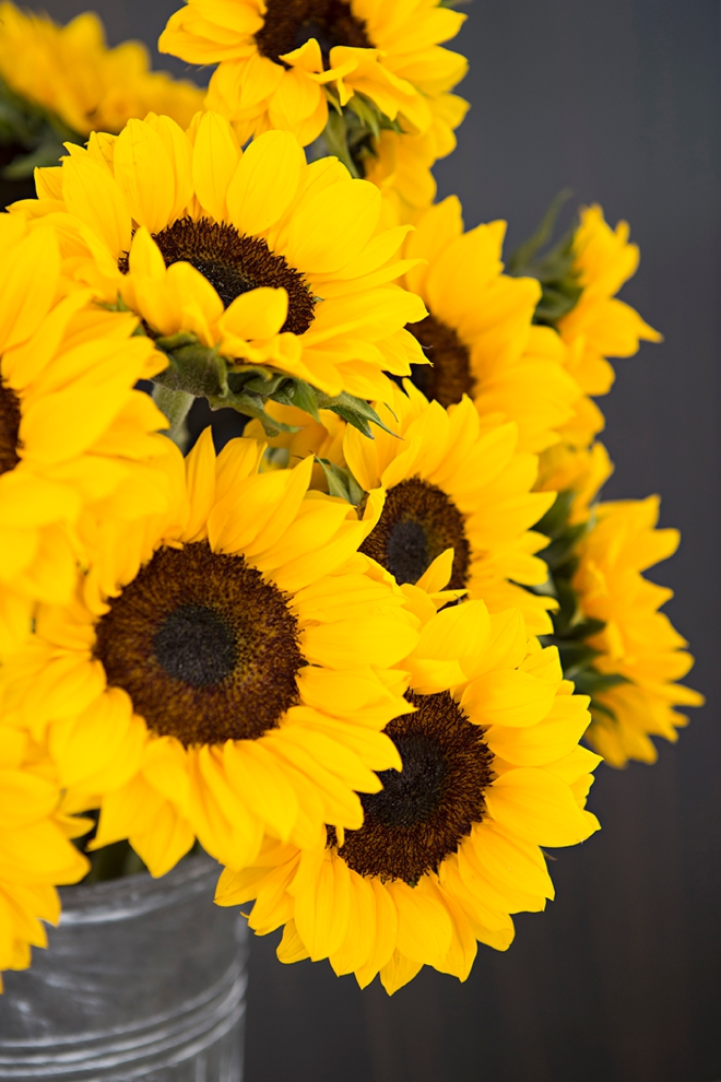 The absolute best tips for using sunflowers in your wedding!