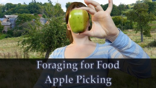 Jo Goes Apple Picking