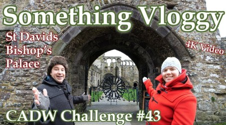 St Davids Bishop's Palace – What Does A Ruined Medieval Palace Look Like? – Cadw Challenge 43/130