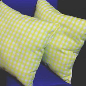 Yellow check cushions
