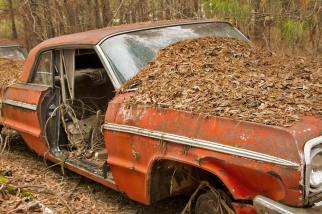 Old-Car-City-40