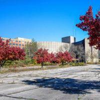 Abandoned: Old Reid Memorial Hospital