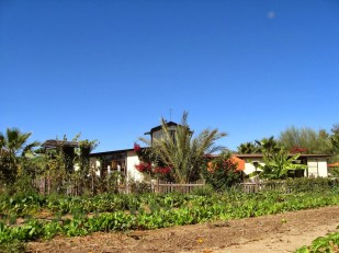 Flora Farms — Garden and Main Building