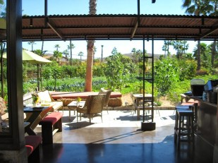 Flora Farms: Bar