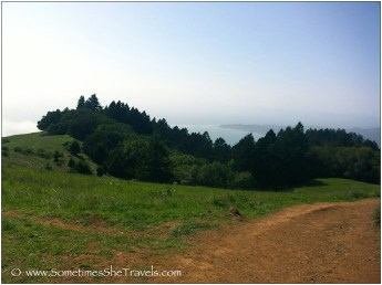Trail through green hills with ocean view