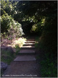 Steps going up on hiking trail