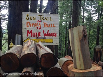 Sun Trail to Dipsea Trail to Muir Woods
